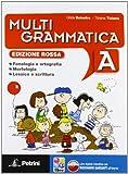 Multigrammatica. Vol. A-B. Con Palestra INVALSI. Ediz. rossa. Con espansioe online. Per la Scuola media. Con e-book