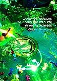 Cahier de Musique 96 pages 21x 29,7 cm Seyes & Portees: Interieur Seyes Grands Carreaux et Portees de Musique - Couverture Brillante Design 3