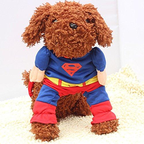 Hunde Kleidung Katze Kleidung Superhund Haustier-Kleidung Superman Hundewelpen Katzen-Halloween-Haustier Kleidung Kleidung für Hunde Katze-Tierbedarf (groß (Hals: 30-34cm)) (Lustig Hund Kostüme Für Halloween)
