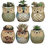 6Pack Big Smile Eule Topf, Keramik Fließende Glasur Boden Serial Set Sukkulente Topf Cactus Pflanztopf Blumentopf Container Pflanzkübel Bonsai Töpfe mit einem Ablaufloch perfekt gife Idee
