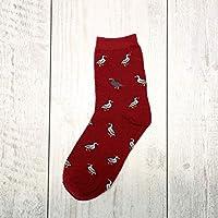CYMTZ 5 Par/Paquete Invierno Otoño Nuevas Mujeres En Tubo Calcetines Perro Animal Mujeres Calcetines Moda Algodón Calcetines5
