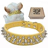 teemerryca Spiked Hundehalsbänder Mittlere Gelb Hundehalsbänder aus Leder für Bulldoggen Jack Russell Terrier robuste Halsbänder Einstellbare Hundehalsbänder 32cm-38cm