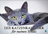 Der Katzenkalender für meinen Schatz (Wandkalender 2020 DIN A3 quer)