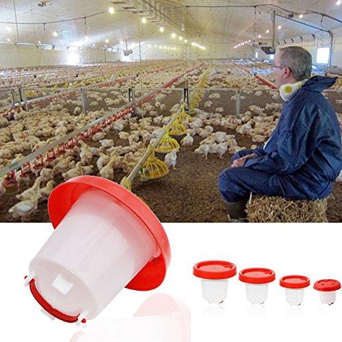 ypypiaol - Comedero para Bebedero de Aves de Corral, gallina, Pan, Comida y Agua, Suministros de riego para Animales
