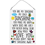 Dorothy Spring You Are My Sunshine My Only Sunshine Colourful Decorative Quote Plaque Metal Sign Size 15x20cm