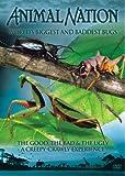 Animal Nation - World's Biggest Bugs [UK Import]