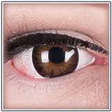 Meralens natürlich braune dunkelbraune Circle Lenses brown Dark Hazel mit Behälter ohne Stärke 14mm Big Eyes farbige Kontaktlinsen