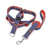 Jia HU Verstellbare Hundeleine Leine Geschirr Easy Walk Training Outdoor für kleine medium Große Hunde S(1.5*120cm?