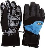 Ziener Silroy As Glove ski pour homme Blau Black/methyl blue stru 9