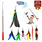 URCGP 8 Pieces of Cat Toy Cat Feather Toy Intelligent Toy Interactive Pen Teaser with a telescopic Pole with 7 Spare Nibs for Cats Kitty