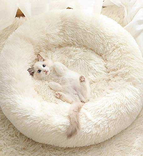 Findm Store Warm Haustierbett Schöne Katzenkissen Donut-Kuschelnest Hundebett Weiches Plüsch Hundesofa mit Rutschfestem Boden, Waschbare Matratze für Kleine, Mittelgroße Hunde Katzen