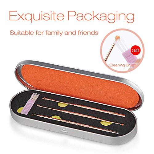Ohrenreiniger, SZRWD Ohrreiniger Edelstahl/Medizinischer Ohrreiniger 3 Stück mit Exquisite Verpackung(Roségold)