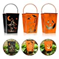 3Pack Halloween Lanterns, Bat, Witch and Jack'face Shaped Halloween hanging lantern for kinds , Battery operated candle with 4&8 Hours Timer .Perfect for Halloween Decorations, Indoor,outdoor from DFL