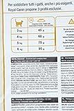 Royal Canin Exigent42Proteinpreference 10kg, 1er Pack (1 x 10 kg Packung) - Katzenfutter