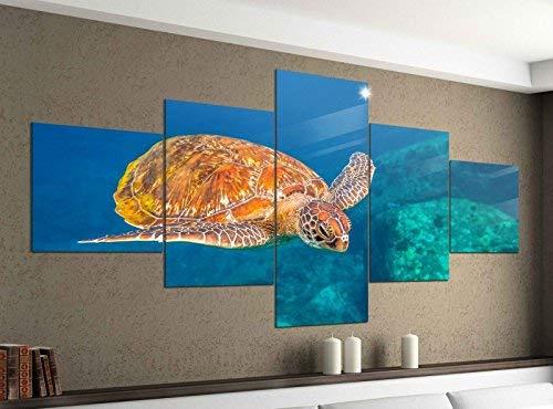 Acrylglasbilder 5 Teilig 200x100cm Schildkröte Ozean tauchen Wasser Druck Acrylbild Acryl Acrylglas Bilder Bild 14F375, Acrylgröße 11:Gesamtgröße 200cmx100cm