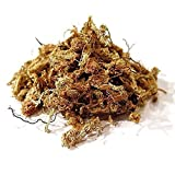 Torfmoos Orchideensubstrat Spaghnum aus Chile Chiloe'Moss RED (1,25kg)