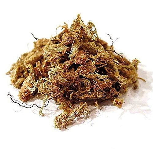 torfmoos-orchideensubstrat-spaghnum-aus-chile-chiloemoss-red-125g