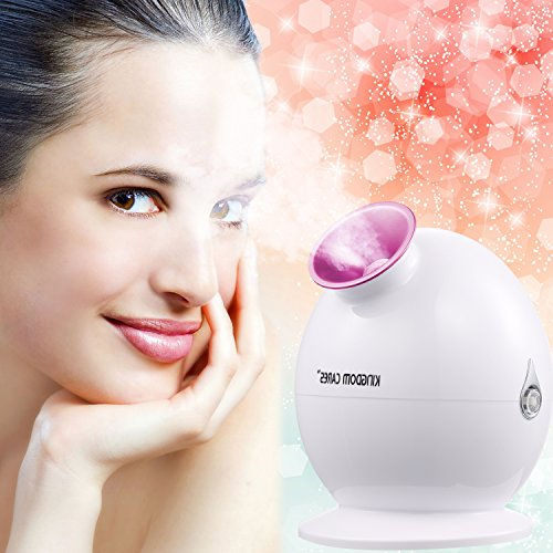kingdomcares-valentines-day-gifts-nano-ionic-hot-mist-facial-steamer-clear-blackheads-thermal-steame