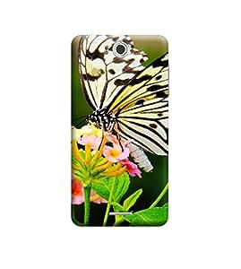EPICCASE Premium Printed Back Case Cover With Full protection For InFocus M530 (Designer Case)
