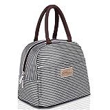 HOMESPON Sac Isotherme Repas Lunch Bag Portable Sac à DéjeunerStrieux en Tissu Imperméable Pliable Sac Pique-Nique Multi-Usages à l'École au Travai pour Les Adultes, Enfants