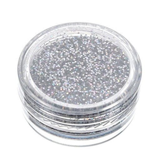JANLY Glitterly maquillage paillettes poudre fard à paupières Silver Eye Shadow pigment (Multicolore)