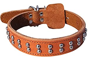 NWYJR En cuir collier pour chien réglable confortable Durable anti-morsure pour chiens de grandes taille moyennes cou 41 cm - 53,8 cm