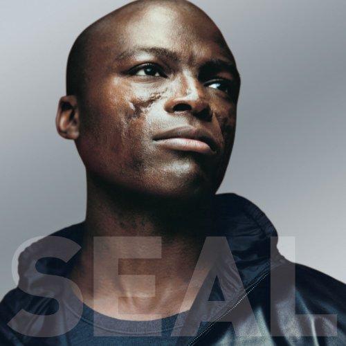 Seal IV Explained (Internet Album)