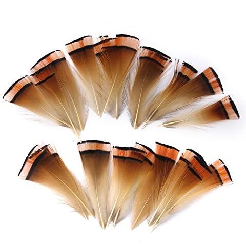Lot de 50pcs 6-8cm Plumes de Faisan pour Artisanat Fabrication de Masque Chapeau
