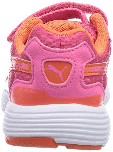 Puma Descendant V Unisex-Kinder Hallenschuhe Pink (18 fluo pink-nasturtium)