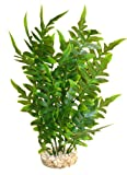 Sydeco Aquariumpflanze Aqua Wild Plant