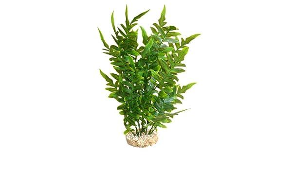 Sydeco Aqua Wild Plante Synthétique Pour Décoration Daquarium Vert