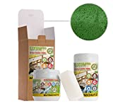 LIXUM BIENEN BEUTENSCHUTZ LASUR BIO (dunkelgrün) 500 ml = 5 Beuten (15m²) natürlicher Holzschutz - von Imkern empfohlen! Bienenverträglich, biologisch, ökologisches, rein natürlich (laborgeprüft)