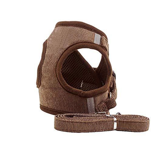 CUTEPET Cane Cavo di Sicurezza, Pet Cintura di Sicurezza con Cintura Regolabile e Cintura di Sicurezza Auto con Fibbia Clip for Controllo Facile (Size : M)