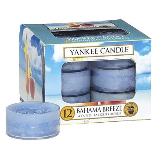 yankee-candle-bahama-breeze-bougies-chauffe-plat-x-12