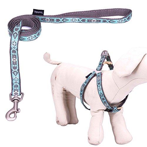 touchdog-hundeleine-hundegeschirr-aus-nylon-verstellbar-ohne-zugkraft-fur-kleinere-und-mittelgrosser