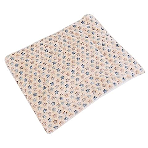 Vanelife pour animal domestique Kitty Couverture, Agneau en velours doux et chaud Tapis de lit pour chien vétérinaire, lavable en machine