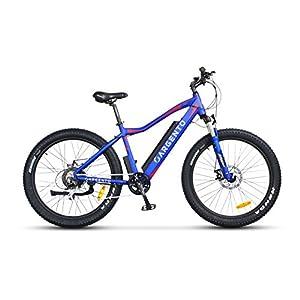 51eRHDRHnoL. SS300 Argento Performance, Bici Elettrica Unisex Adulto