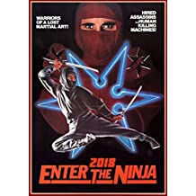 Calendrier mural 2018 [12 pages 20x30cm] Ninja Kung Fu Action # Vintage Trash film affiches Reprint [Calendar]