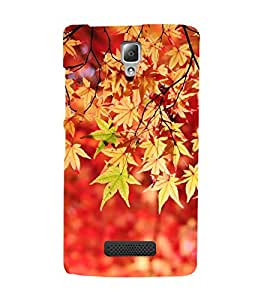 ifasho Designer Back Case Cover for Lenovo A2010 (Love Photography Familial Cameras And Photography)