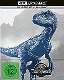 Jurassic World: Das gefallene Königreich (4k UHD) Limited Steelbook (exklusiv bei Amazon.de) [Blu-ray] [Alemania] [DVD]