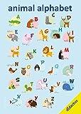 animal alphabet: Englisches Alphabet als Lernposter mit Tieren