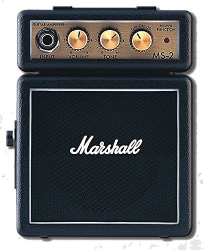 Amplificatore MS-2 micro