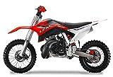 Pitbike Motocicletta da Motocross 50cc Lem Motor A12 Rossa