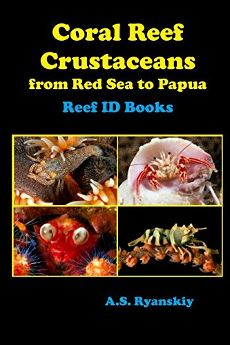 Coral Reef Crustaceans: From Red Sea to Papua por A. S. Ryanskiy