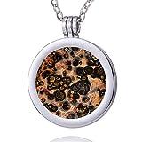 Morella mujeres collar 70 cm acero inoxidable y colgante con Coin moneda amuleto de piedra preciosa gema Diaspro leopardo 33 mm plato de chakra en bolsa de joyería