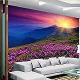 Zyzdsd Benutzerdefinierte Wandbild Tapete 3D Vlies Natur Alpine Blumen Schöne Sonnenaufgang Wanddekorationen Schlafzimmer Wohnzimmer Fototapete-350X250CM