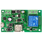 OWSOO® Sonoff DC5V 12V 24V 32V Wifi Switch Wireless Relay Module Smart Home Automation Modules