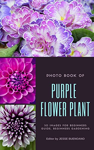 Photo Book of Purple Flower Plant: 50 Beauty Images Purple Flower Blossom Plant for Creative Ideas Make Your Own Stylish Garden for beginners guide, beginners ...  (Beginners Gardening Photo Books)