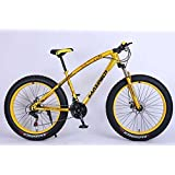 Fat Tyre with Bubbles (Fat Boy) Adventure Sports MTB Cycle with 21 Shimano Gears