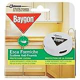 Baygon Esca Formiche - Protezione Cucina, 30 g - Confezione da 4